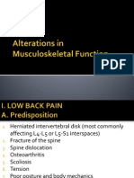 Musculoskeletal Function Presentation