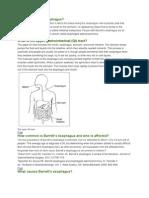 Baret esofagus