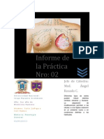 Informe de la Práctica N (2)