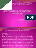 Amor Romantico en La Diversidad Sexual