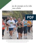 Audesirk, cap 6 a 8.pdf
