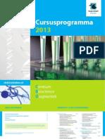 Cbd Brochure 2013