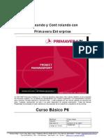 30350157 Primavera P6 Curso Basico Espanol