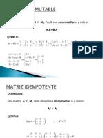 matricesconmutableidempotentenilpotenteinvolutivaelementalyequivalente-100719003657-phpapp02
