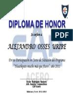 Diploma Programa Huachipato Mucho Mas Que Acero