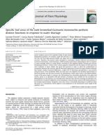 CAM Specific Leaf Areas Ofthe Tankbromeliad Guzmania Monostachia Perform Distinct Functions in Response to Water Shortage