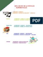 Programul Zilnic de Activitati Experentiale