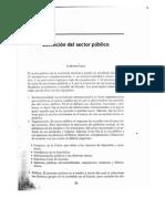 Ayala_Jose._Ec_del_Sector_Publico_Mexicano_Cap_1.pdf