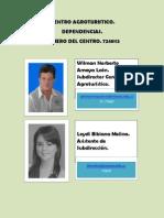 DIRECTORIO - copia.pdf