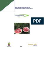 Manual Cultivo Sandia Melon