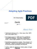 Adopting Agile Practices