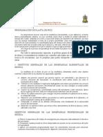Programacion Flauta de Pico
