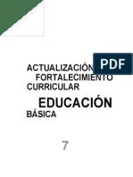 actualizacion-curricular 7º