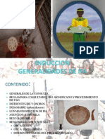 INDUCCION IFA.pptx