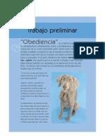 101 Trucos Caninos