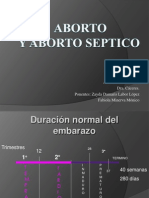 Aborto Seminario...