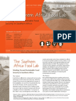 Change Lab Case Study - The Southern Africa Food Lab