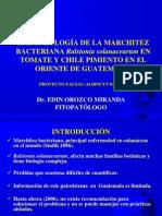 epidemiología marchitez-bacteriana-2006