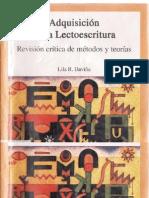 Libro Adquisicion de La Lectoescritura