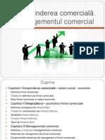 Intreprinderea Comerciala (IC)