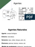 02 Agentes