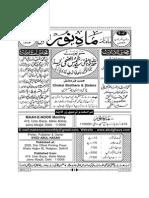 Mahenoor June 2013(1)
