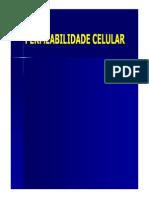 MEMBRANA PLASMATICA - PERMEABILIDADE