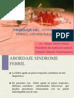 Abordaje Del Sindrome Febril Hemorragico