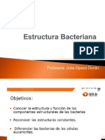 Clase 3 Estructura Bacteriana Parte 1 2013 Julia