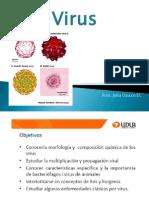 Virus Udla 2013