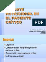 soportenutricionalenelpacientecrtico-101108144513-phpapp01