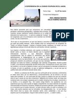 4-Informe Bg- 06 y 07 Junio 2009