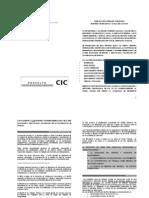 proyecto cic (1)