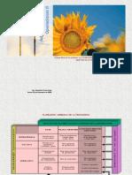 planagregadodeproduccion-100118103255-phpapp02