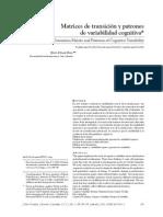 Matrices de transición y patrones de variabilidad cognitiva