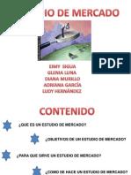 Copia de Expo Estudio de Mercado1 (1)