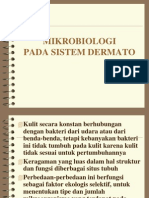 07 Mikro Dermato