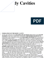 Body Cavities Embryology2