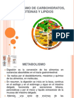 Nutricion Del Metabolismo de Carbohidratos, Proteinas y Lipidos