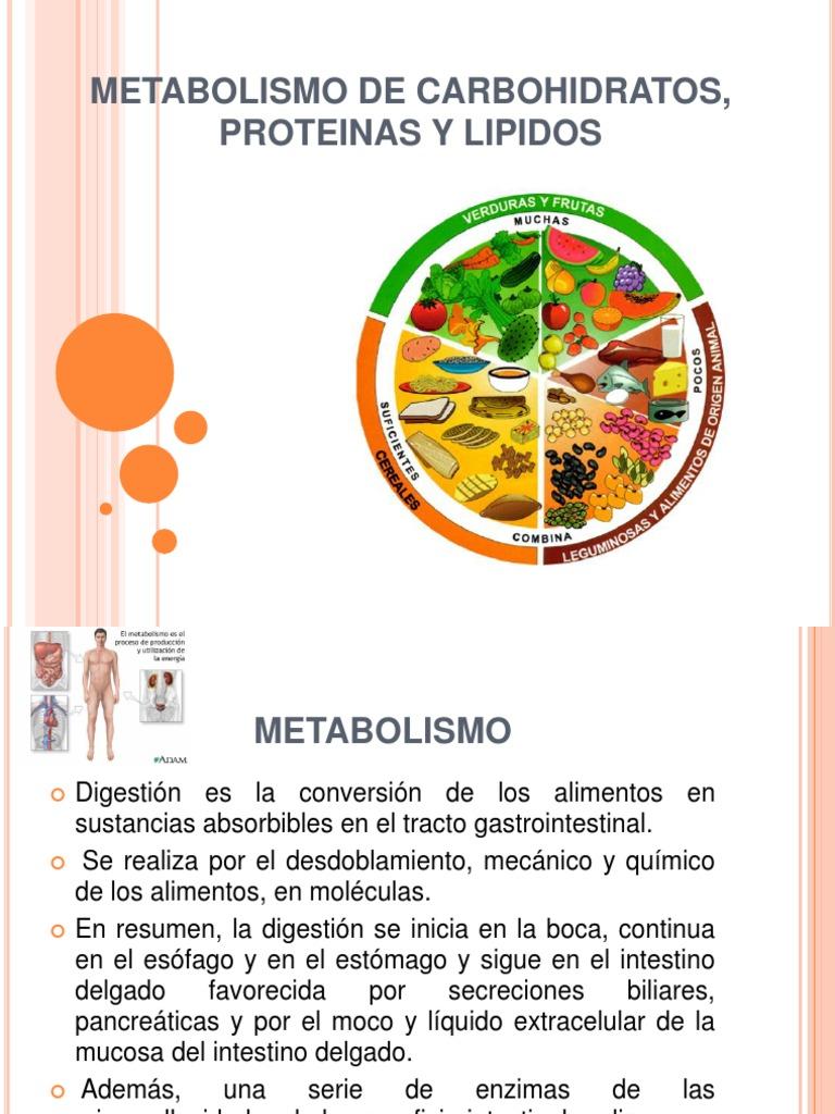 Nutricion Del Metabolismo de Carbohidratos, Proteinas y..