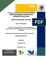 TESIS ISAI EUAN CHI.pdf