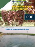 Jorge Tipismana Fertiirrigacion en Vid