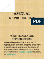 Asexual Reproduction 2 1