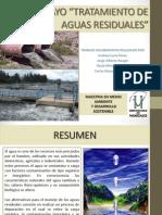 ensayotratamientoaguasresiduales-101029174518-phpapp01