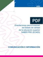 Guia Comunicacion e Informacion