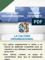 Cultura Organizacional . Administarcion.edu