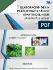 ELABORACION DE UN PESTICIDA ORGANICO APARTIR DEL NEEM- SEMINARIO DE PROYECTOS.pdf