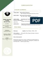 Curriculum Vitae T7