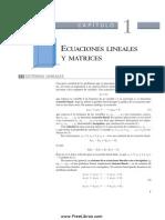 Ecuaciones Lineales y Matrices