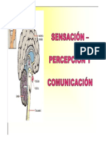 SENSACION 2013 (1)